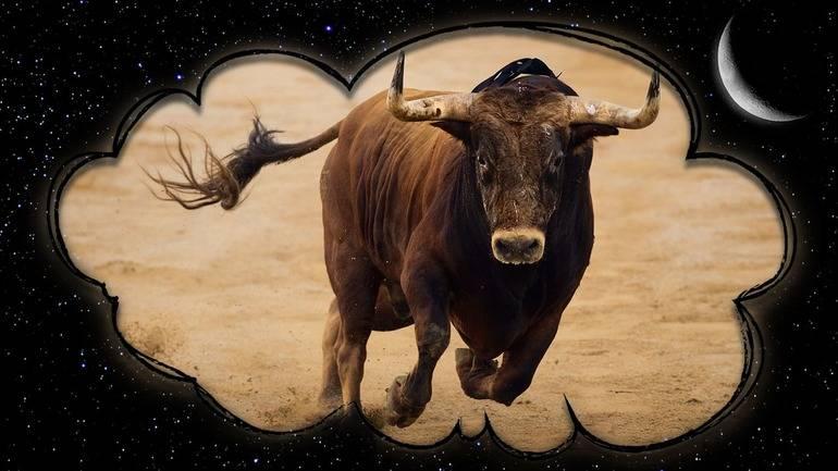 К чему снится бык, сонник – бык во сне