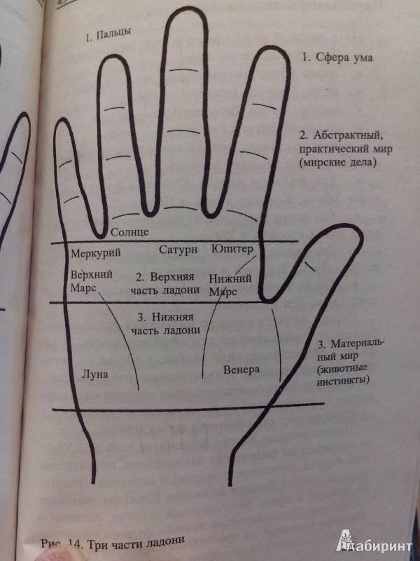 Кольцо ленорман: значение и описание карты, сочетание с другими