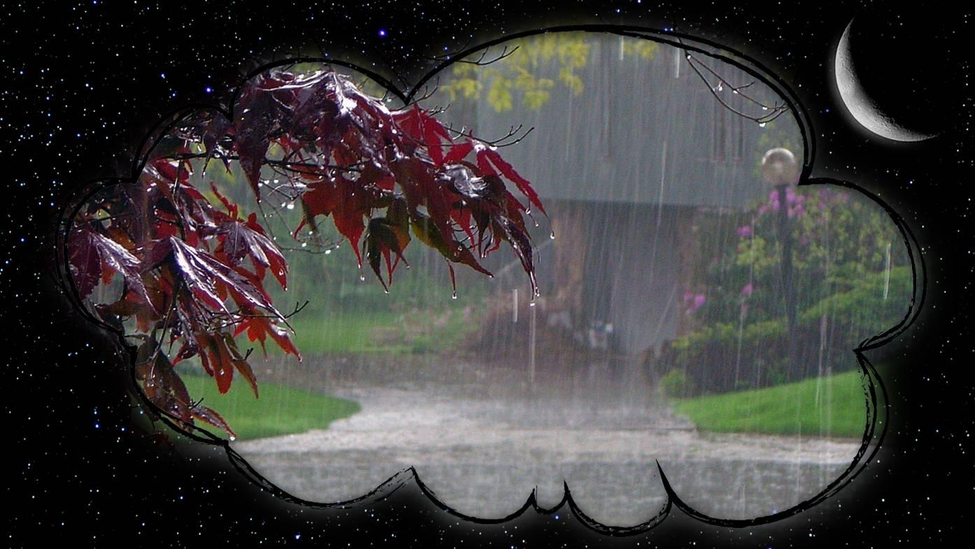 Сонник чувствовать дождь. к чему снится чувствовать дождь видеть во сне - сонник дома солнца