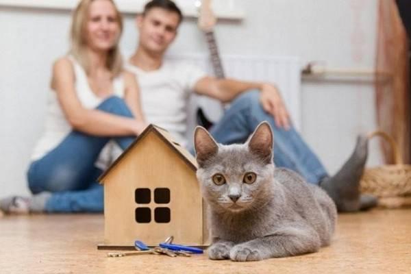 Что оставляют в квартире при переезде. важные, интересные народные приметы и ритуалы при переезде на новое место жительства