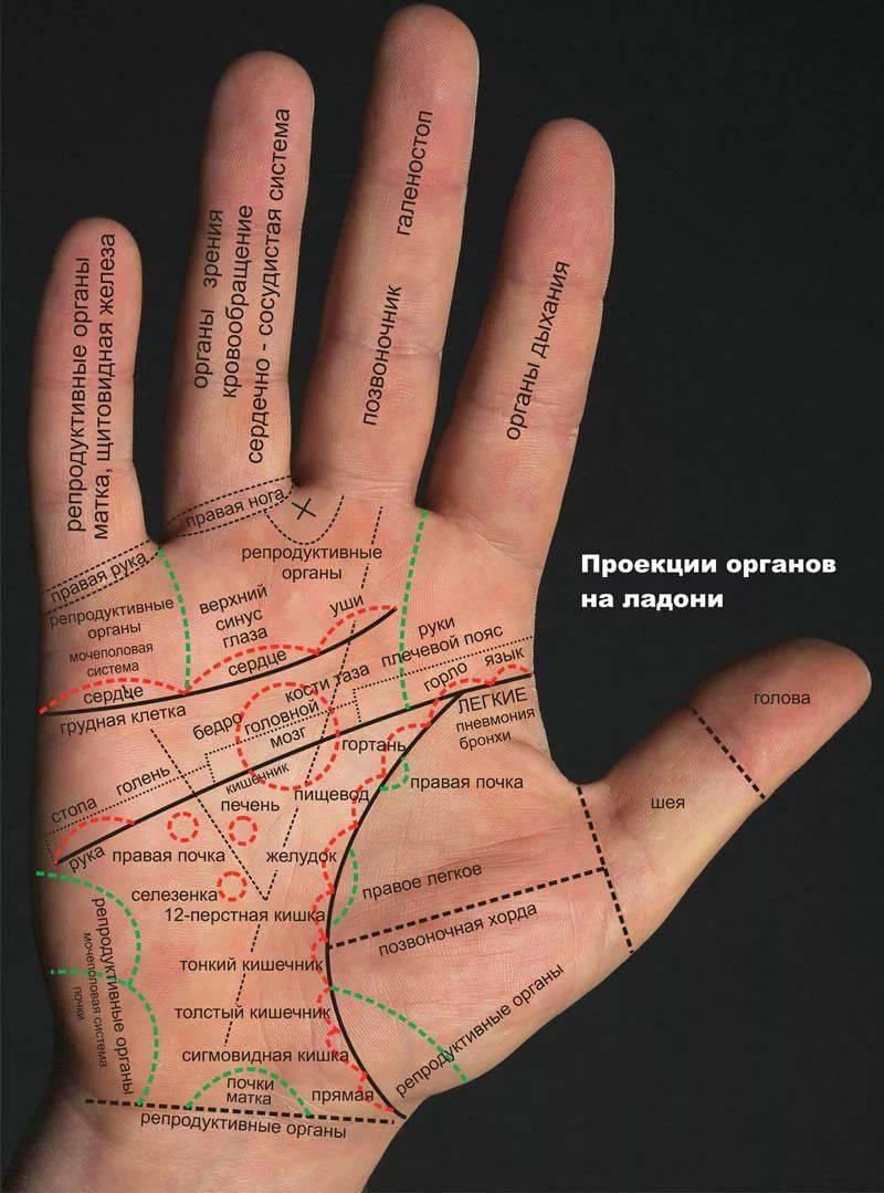 Узнай свою судьбу – хиромантия, линии на руке, расшифровка | узнай свою судьбу