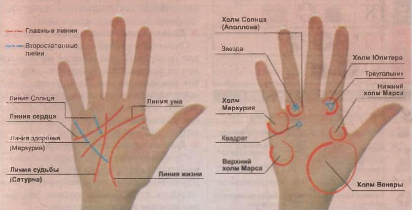 Линия жизни на руке — как расшифровать знаки опасности