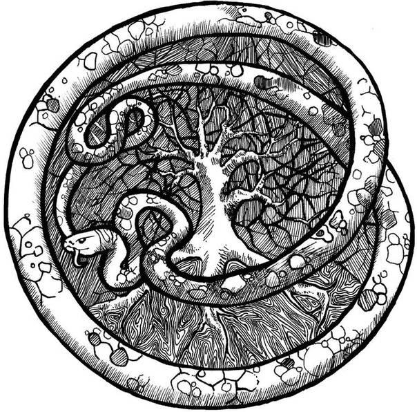 Значение символа уроборос — змея, кусающая себя за хвост. значение символа уроборос