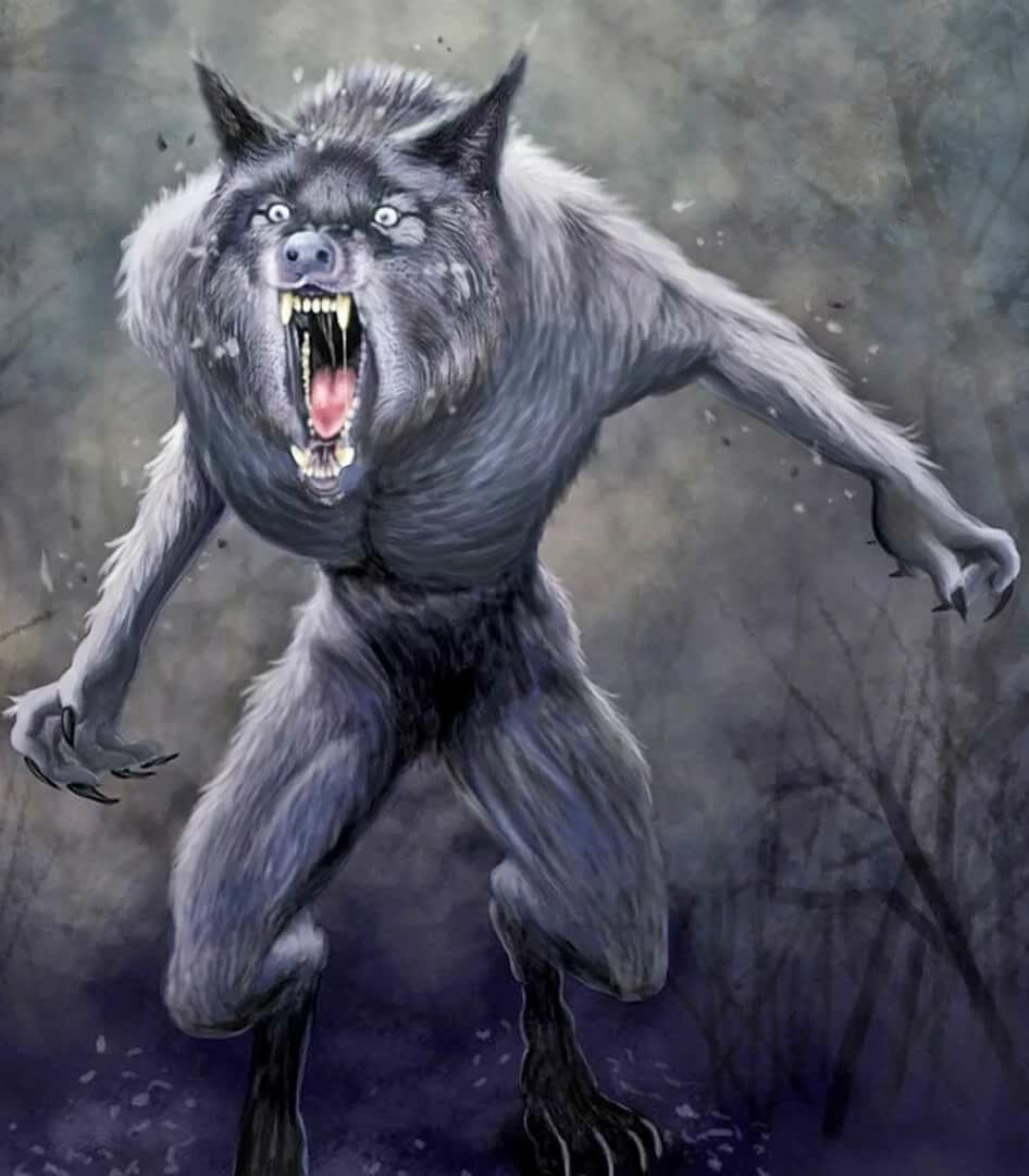 Шотландская мифология и фольклор   bestiary.us