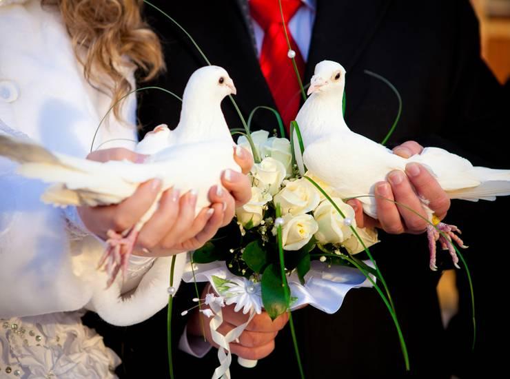 Свадебные приметы (28 фото): суеверия и обычаи для жениха и невесты в день свадьбы, советы по выбору народных оберегов