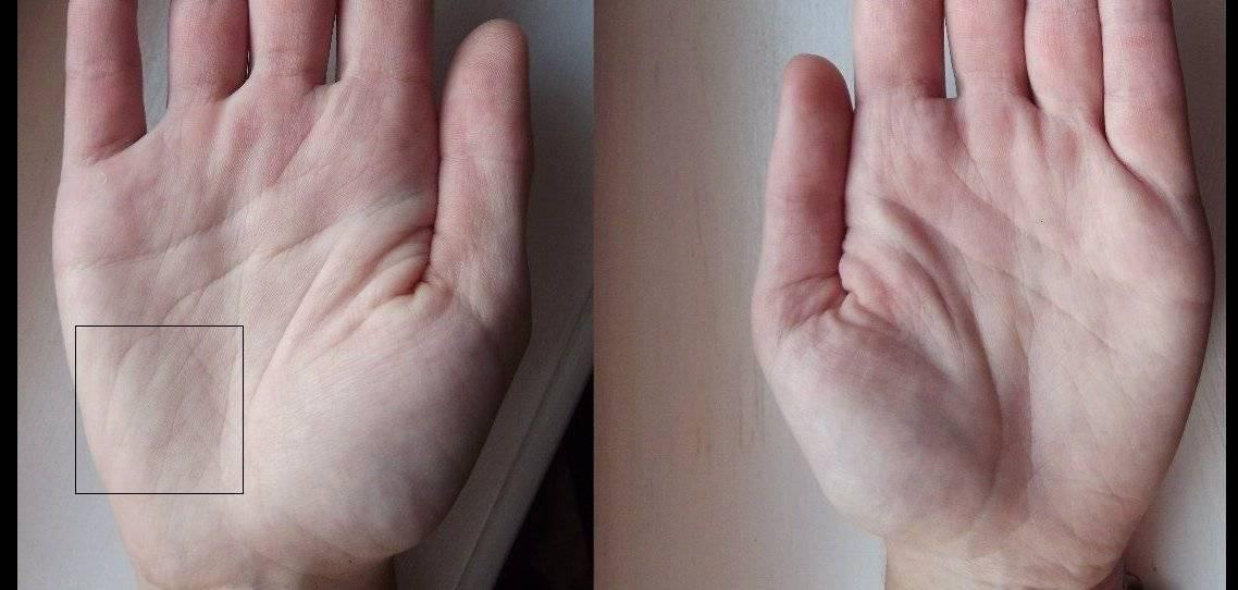 Как прочесть пояс венеры на руке человека. холм венеры хиромантия