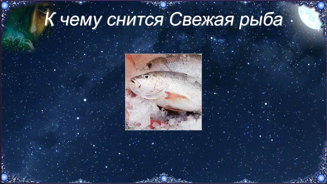 К чему снится рыба женщине: толкования снов