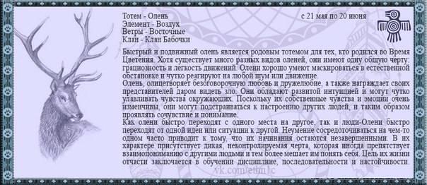 Символ перуна, щит и другие атрибуты славянского бога-громовержца
