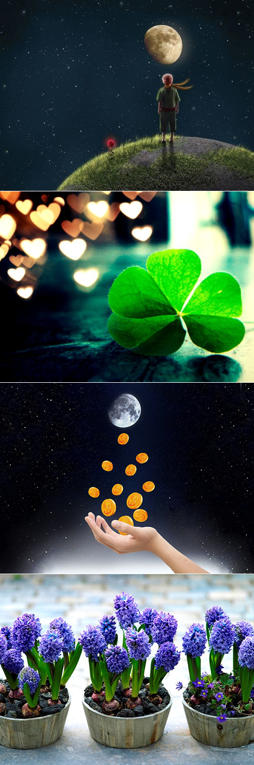 Обряды в полнолуние: на исполнение желания, ритуалы на деньги, успех