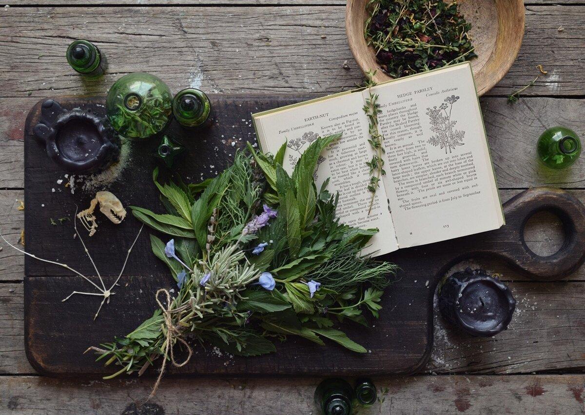 Что такое одолень-трава и как она используется в качестве оберега