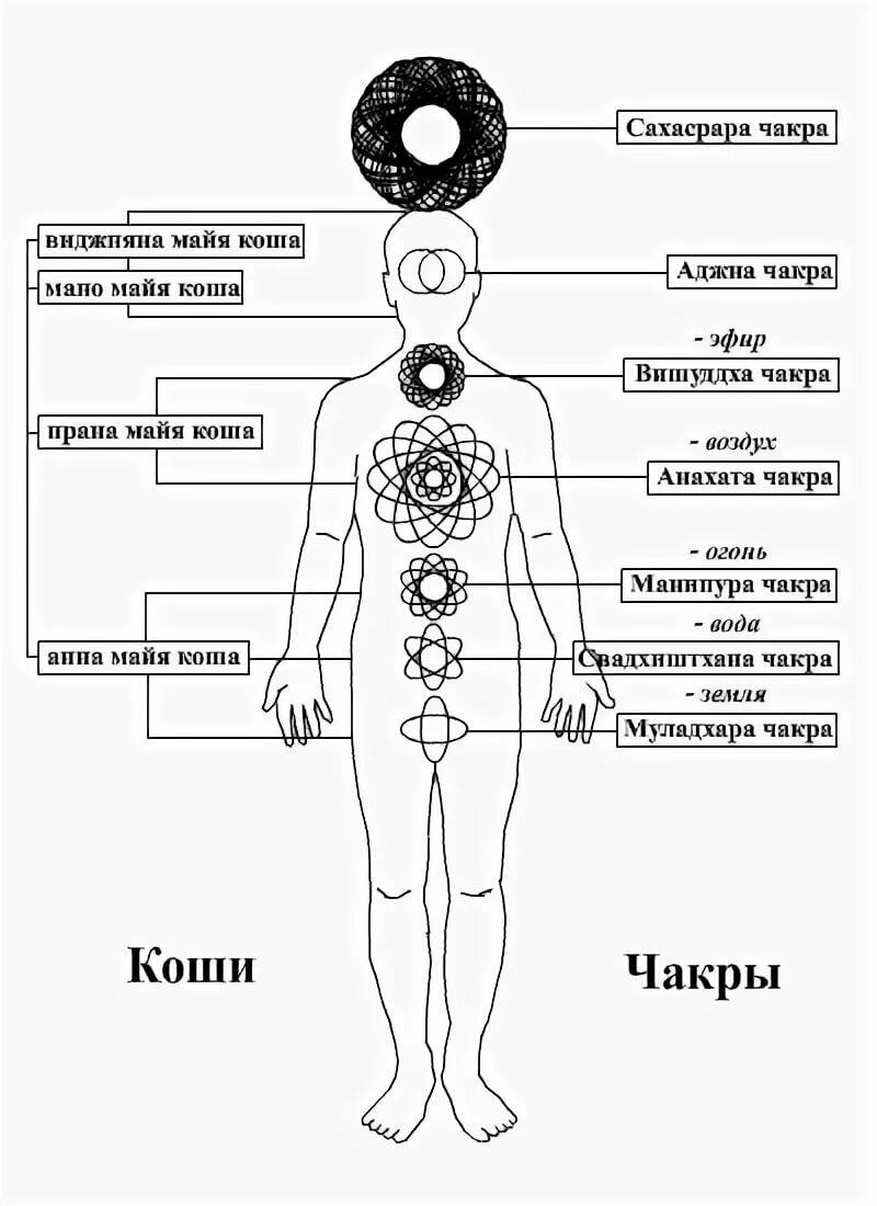 Чакры человека, их расположение и значение — 9 способов раскрытия чакральной силы