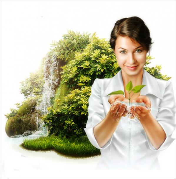 Магические деревья и их свойства | магия
