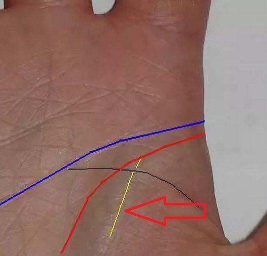Линия влияния на руке и её значение