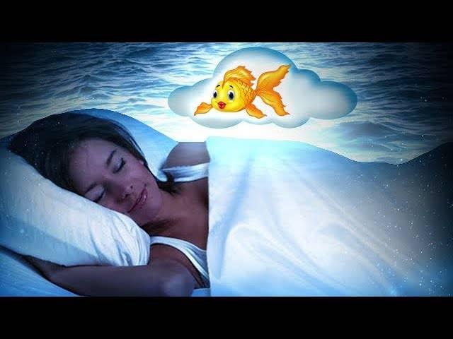 Сонник нести большую рыбу. к чему снится нести большую рыбу видеть во сне - сонник дома солнца