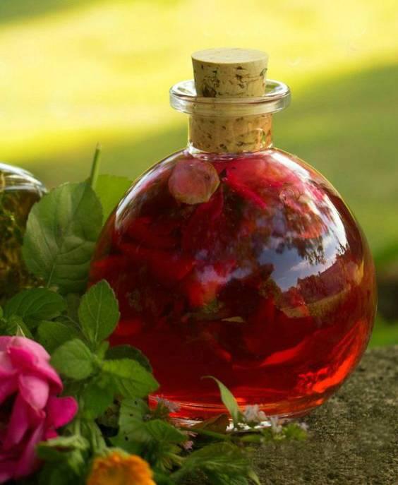 Приворотное зелье - магический напиток любви