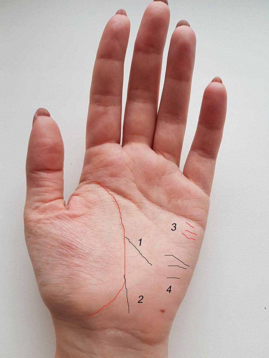 Линии путешествий на руке: фото, значение