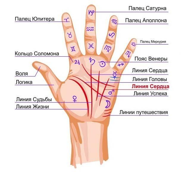 Родинка между мизинцем и безымянным пальцем на правой руке