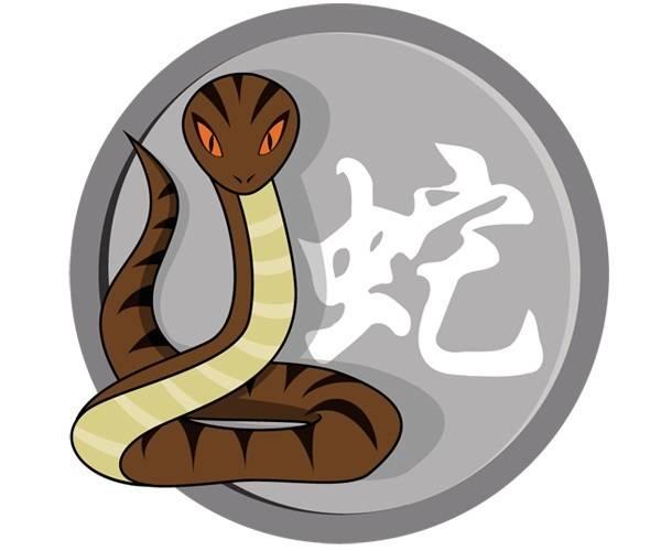Змея восточный китайский гороскоп по годам, характеристика, совместимость и характер змеи