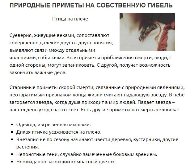 Ванька мокрый (бальзамин): приметы и суеверия, можно ли держать цветок дома — бальзамин комнатный приметы и суеверия