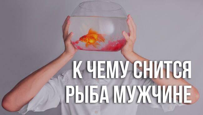 Сырая но мёртвая рыба