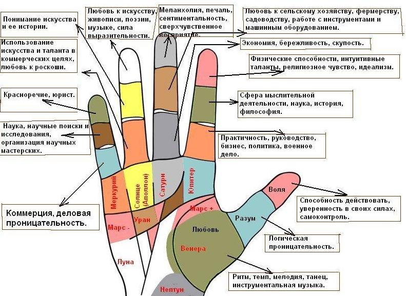 Каждый палец руки связан с 2 органами: исцели себя сам :: инфониак