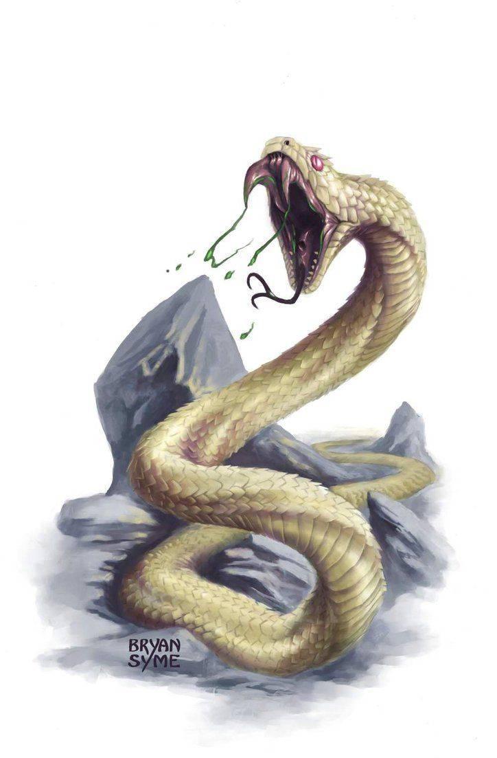 Двухголовые змеи: описание, примеры, интересные факты. амфисбена — двуглавая змея из древнегреческих мифов 2 х головая змея
