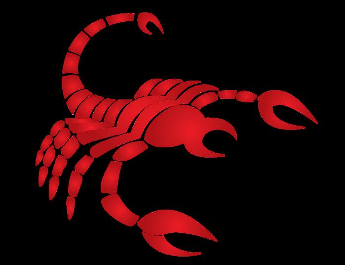 Знак зодиака скорпион: даты рождения