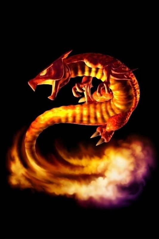 Применение и значение амулета саламандра – кому подходит такой символ?