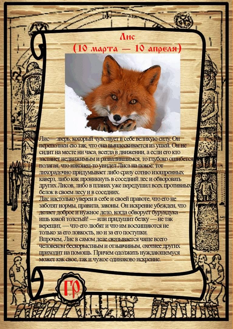 Тотемное животное — узнаём своего зверя по дате рождения онлайн