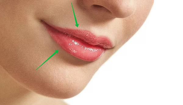 Прикусить губу - значение приметы и пословицы