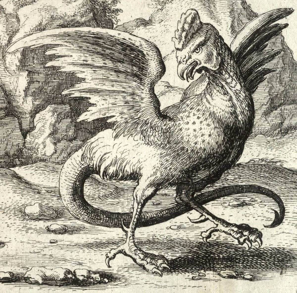 Кокатрикс - беастиарий  - каталог статей - ведьмак бестиарий