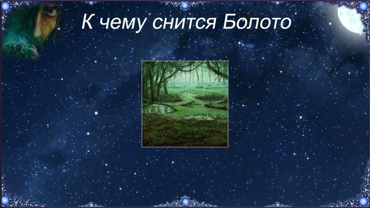 Сонник меня толкнули в болото. к чему снится меня толкнули в болото видеть во сне - сонник дома солнца