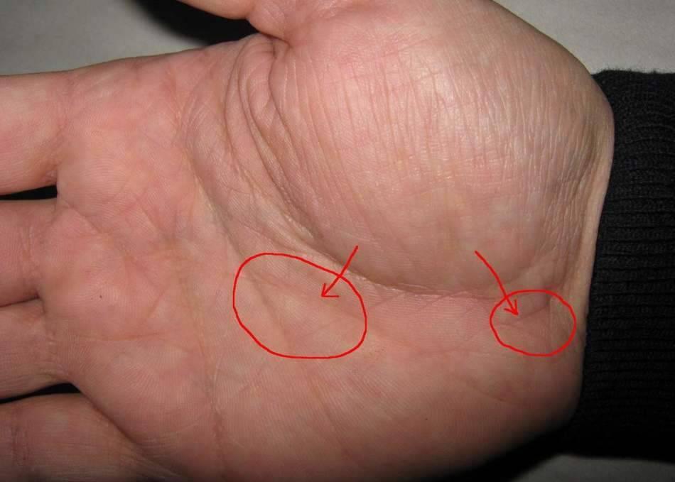 Линия богатства на руке: значение в хиромантии, фото