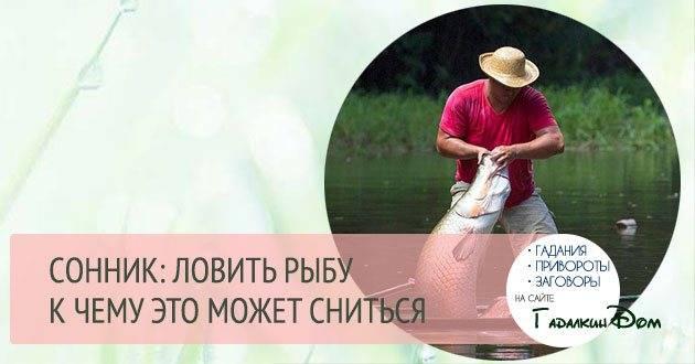Большая рыба в реке