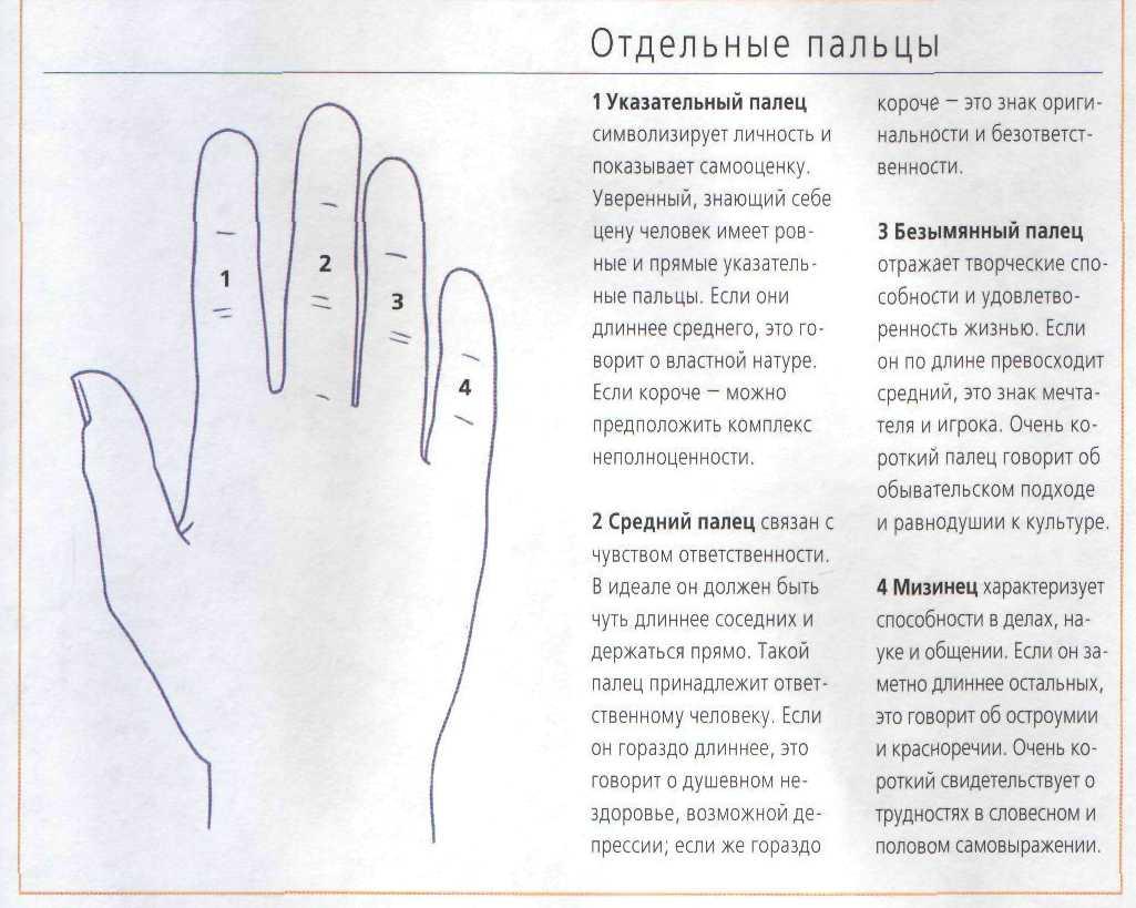 Уроки самолечения: узнаем, какой палец отвечает за какой орган