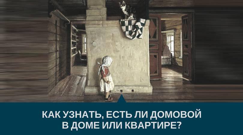 Как увидеть домового в доме и что делать если увидели?