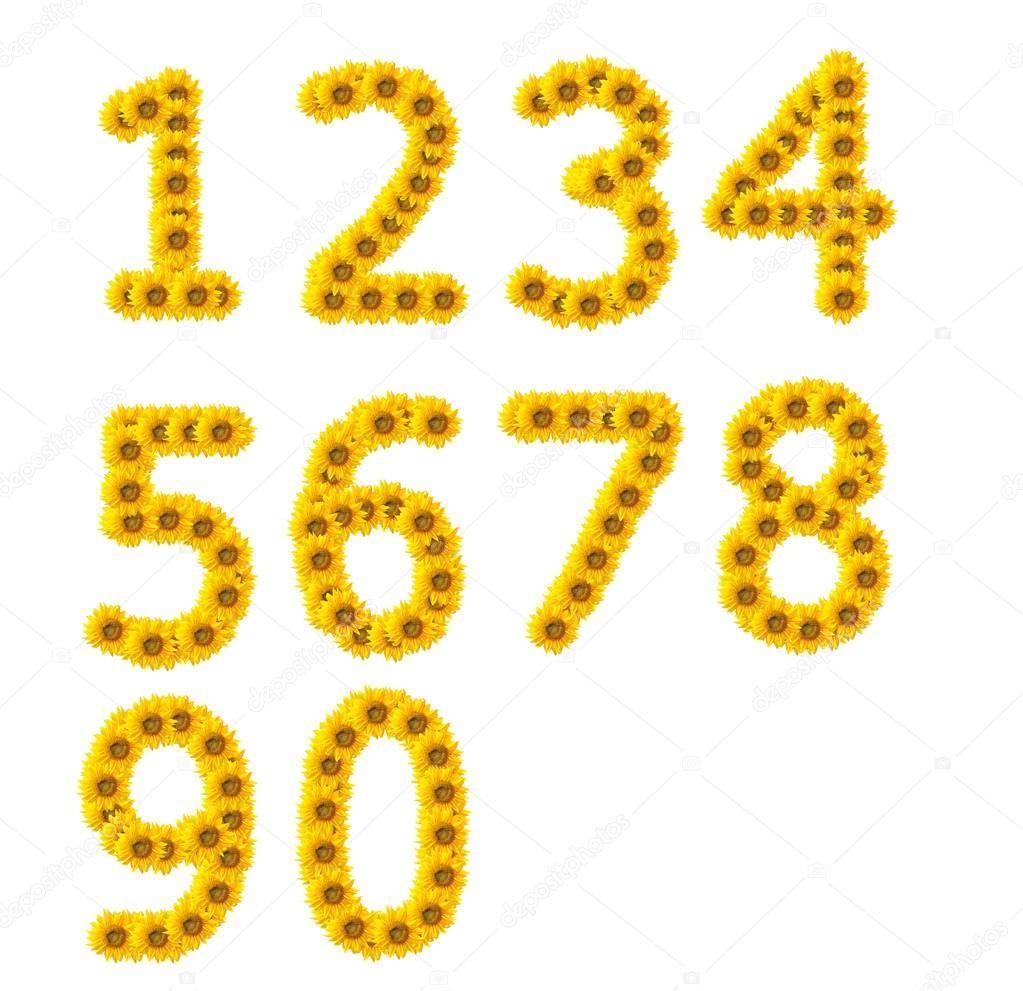 Личный год и личный месяц - как рассчитать и интерпретировать
