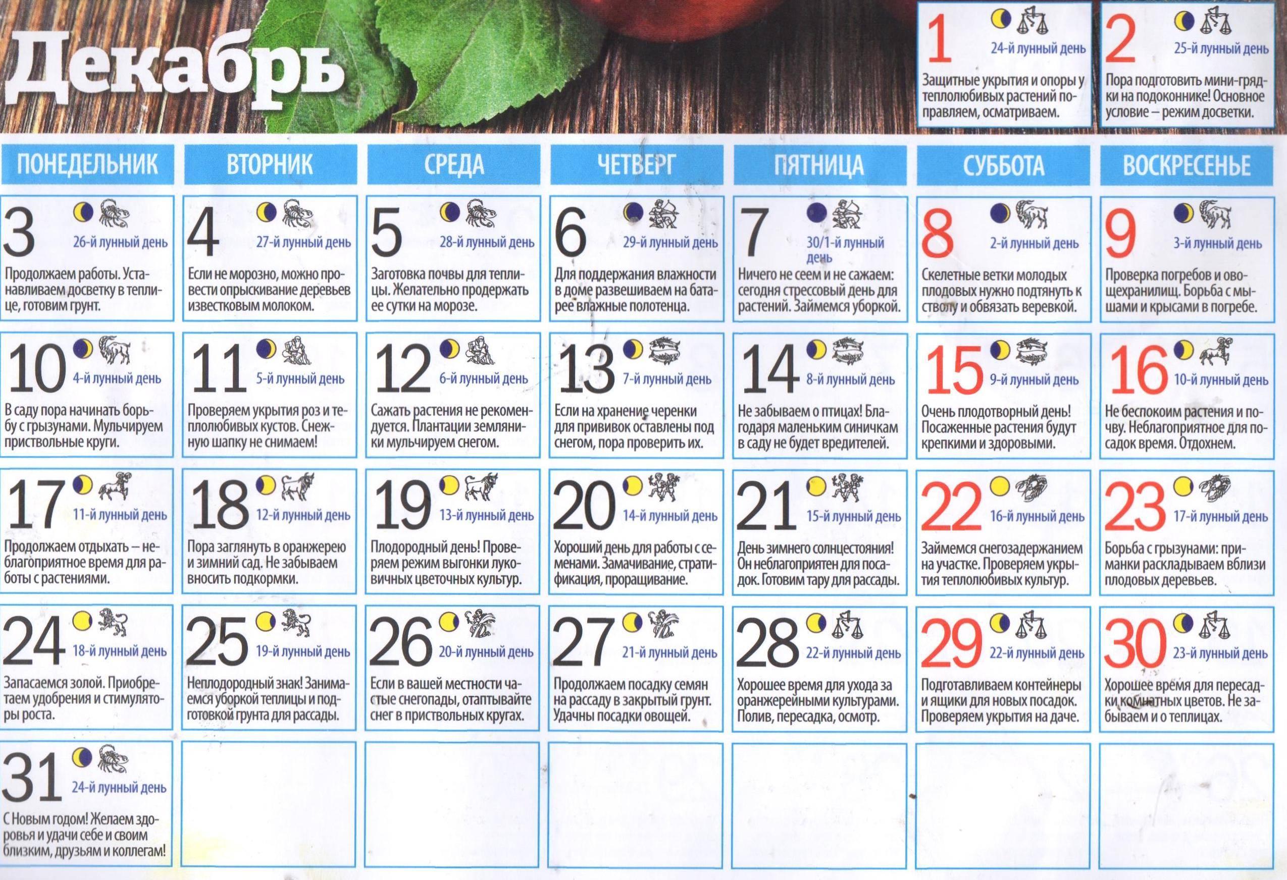 Дни лунного календаря благоприятные для отдыха