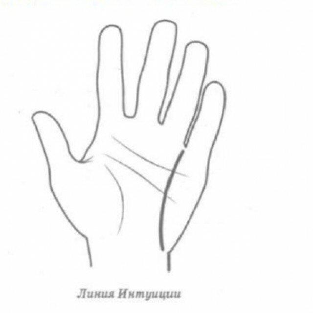 Хиромантия: линия интуиции на руке (фото)