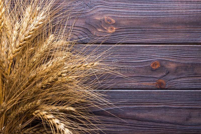 Сноп пшеницы приметы — читать ответ
