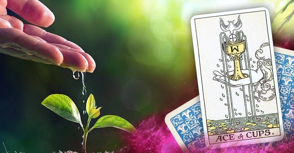 Двойка кубков (чаш) в картах таро: значение в отношениях, любви