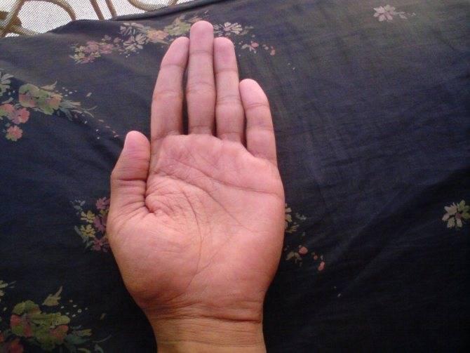 ⚡счастливая рука в хиромантии ➡ что обозначает❗ | волковыск.by