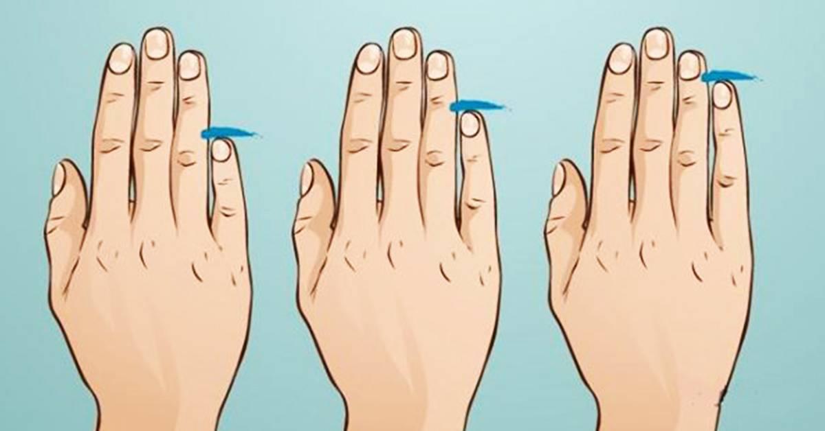Что длина пальцев говорит о характере человека