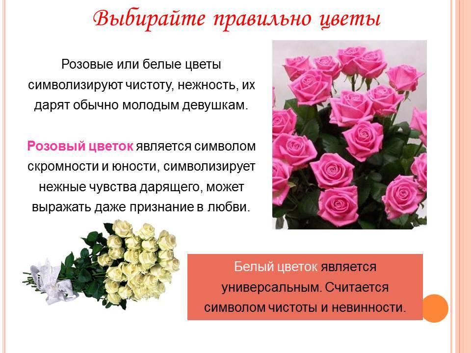 Приметы о количестве роз в букете