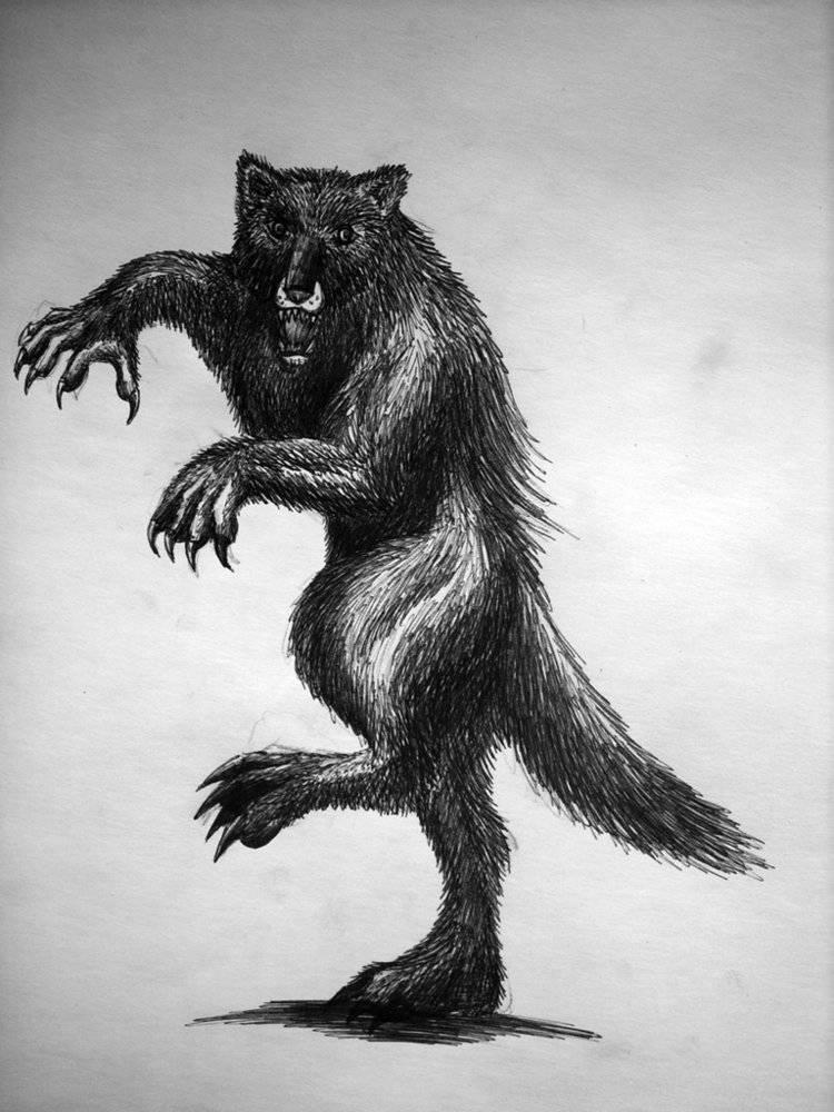 Фейри — магические существа из легенд