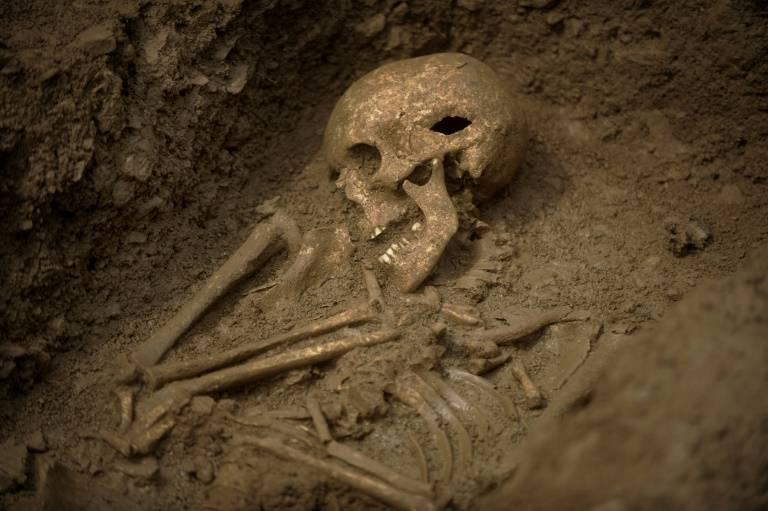 Нефилимы: огромные дети людей и ангелов | обратная сторона истории|легенды | яндекс дзен