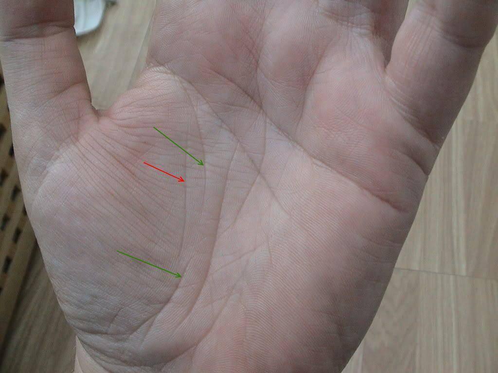 Хиромантия: линии на руке, расшифровка для начинающих | узнай свою судьбу