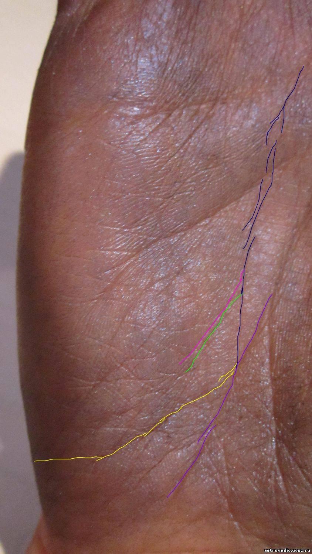 Линия переезда (эмиграции) на руке: фото с трактовкой и по какой ладони ворожить, трактование расположения и причины смещения - смотреть видео