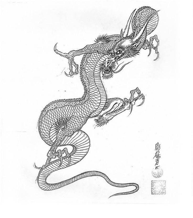 Хэби хэби но ми, модель: ямата но ороти | one piece wiki | fandom