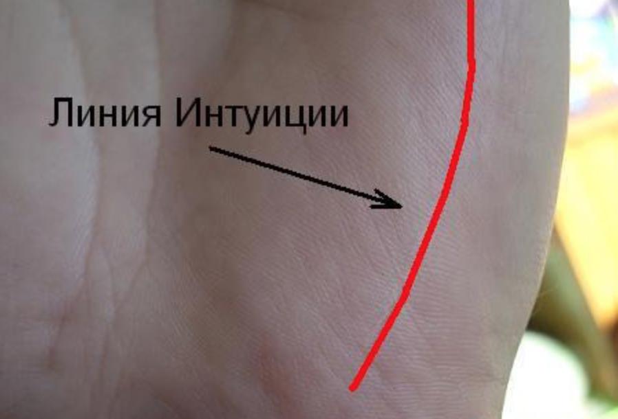Линия интуиции на руке: толкование и значение в хиромантии, фото